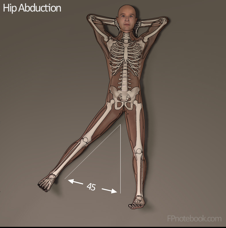 Hip Range Of Motion